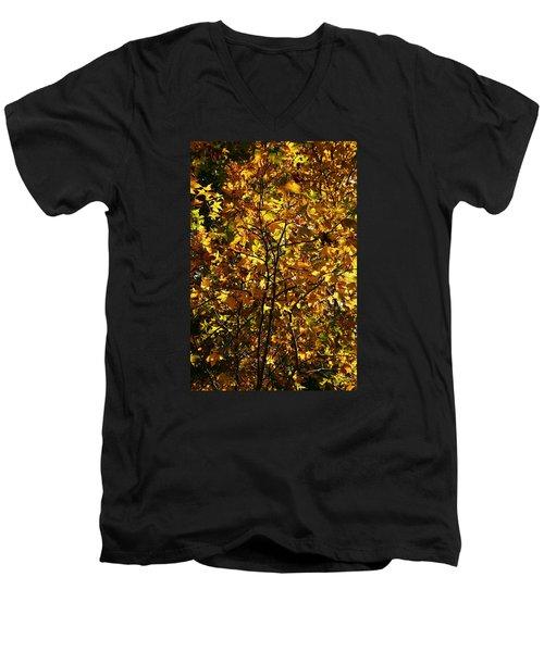 Men's V-Neck T-Shirt featuring the photograph Radiant Leaves by Karen Harrison