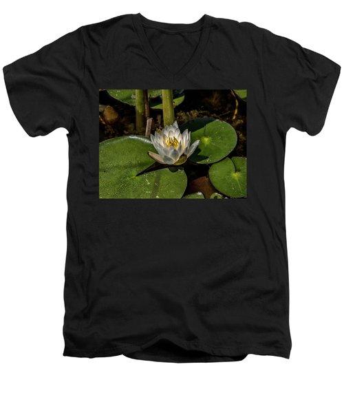 Radiant White Pond Lily  Men's V-Neck T-Shirt