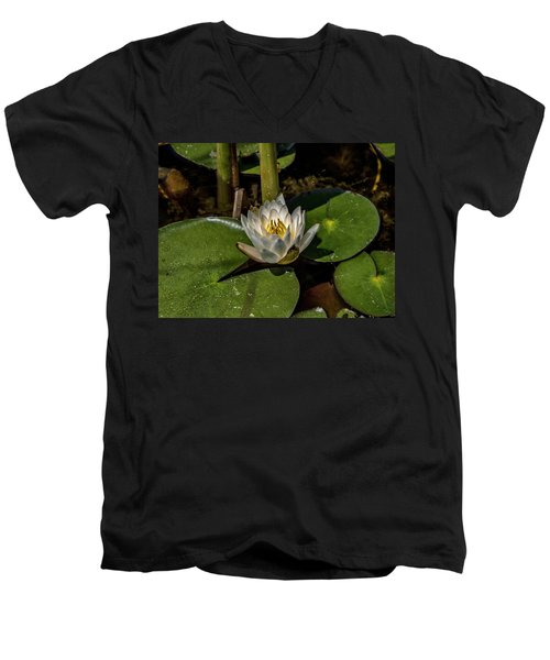 Radiant White Pond Lily  Men's V-Neck T-Shirt