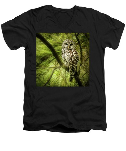 Radiating Barred Owl Men's V-Neck T-Shirt
