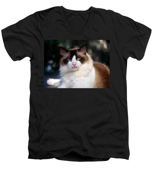 Rag Doll Alpha Pose 1 Men's V-Neck T-Shirt