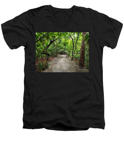 Rain Forest Road Men's V-Neck T-Shirt
