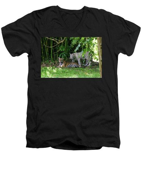Rain Forest Tigers Men's V-Neck T-Shirt
