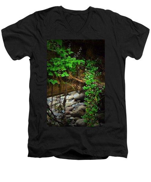Rain Forest Walk Men's V-Neck T-Shirt
