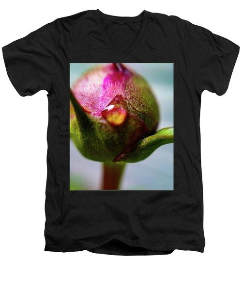 Raindrop On Peonie Men's V-Neck T-Shirt