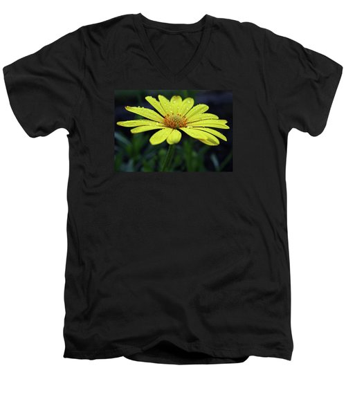 Men's V-Neck T-Shirt featuring the photograph Raindrops On Daisy by Judy Vincent