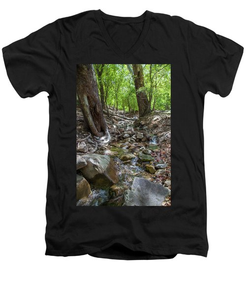 Ramsey Canyon Preserve Men's V-Neck T-Shirt