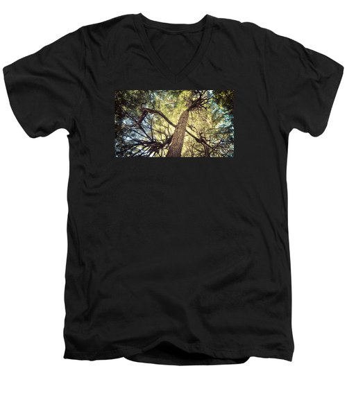 Reaching For Sun Men's V-Neck T-Shirt by Michele Cornelius
