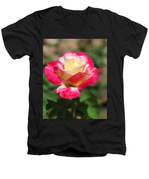 Red And Yellow Rose Men's V-Neck T-Shirt