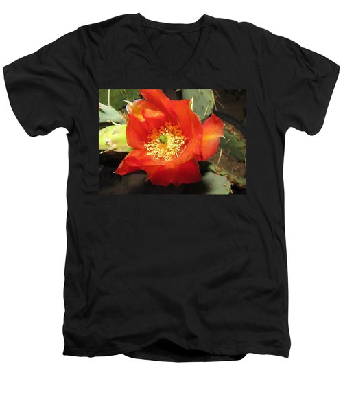 Red Bloom 1 - Prickly Pear Cactus Men's V-Neck T-Shirt