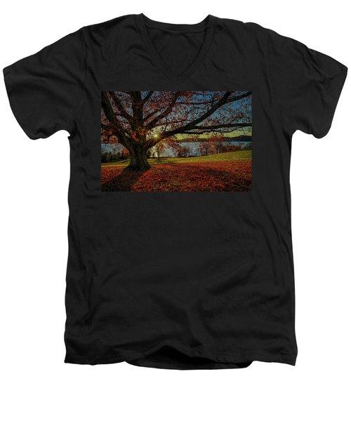 Red Carpet Men's V-Neck T-Shirt by Jeffrey Friedkin