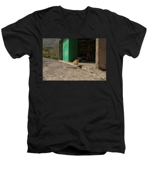 Red Cat And Green Shed Men's V-Neck T-Shirt by Patricia Hofmeester