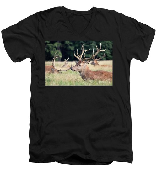Red Deer Stags Richmond Park Men's V-Neck T-Shirt