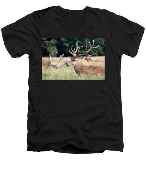 Red Deer Stags Richmond Park Men's V-Neck T-Shirt