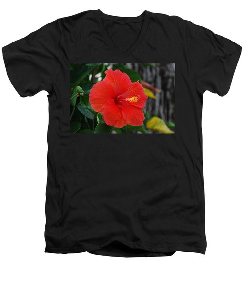 Men's V-Neck T-Shirt featuring the photograph Red Flower by Rob Hans