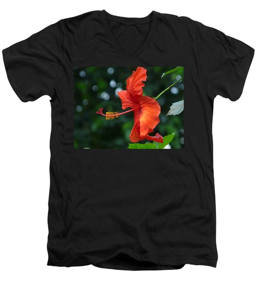 Red Hibiscus Men's V-Neck T-Shirt by Valerie Ornstein