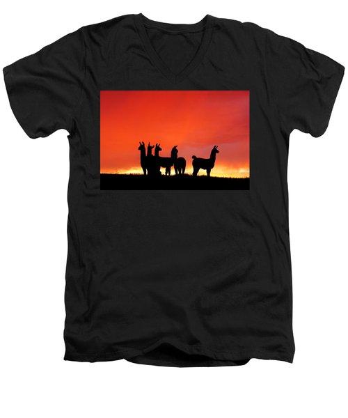 Red Llama Sunset 1 Men's V-Neck T-Shirt