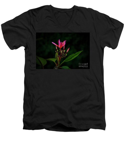Red Plumeria Men's V-Neck T-Shirt