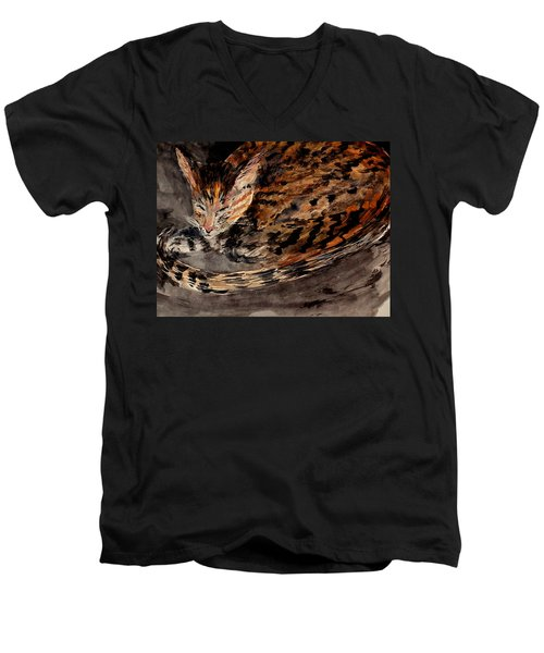 Red Spot Tabby Men's V-Neck T-Shirt