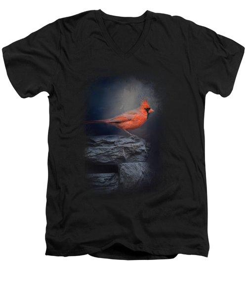 Redbird On The Rocks Men's V-Neck T-Shirt
