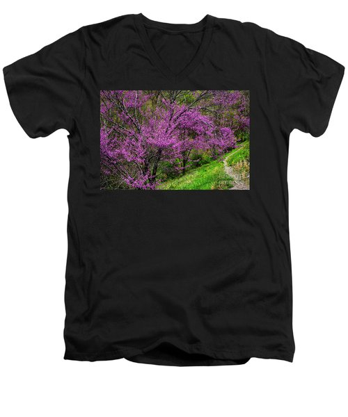 Men's V-Neck T-Shirt featuring the photograph Redbud And Path by Thomas R Fletcher