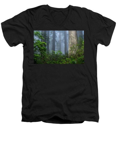 Redwoods In Blue Fog Men's V-Neck T-Shirt