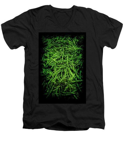 Renaissance Green Beans Men's V-Neck T-Shirt