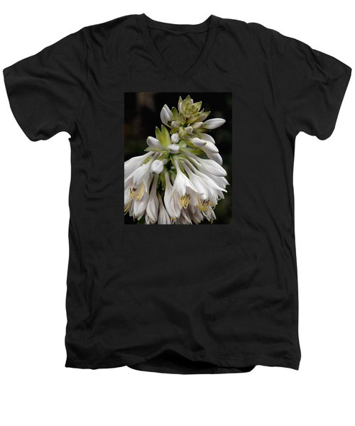 Renaissance Lily Men's V-Neck T-Shirt