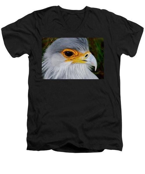 Reptile Hunter Men's V-Neck T-Shirt