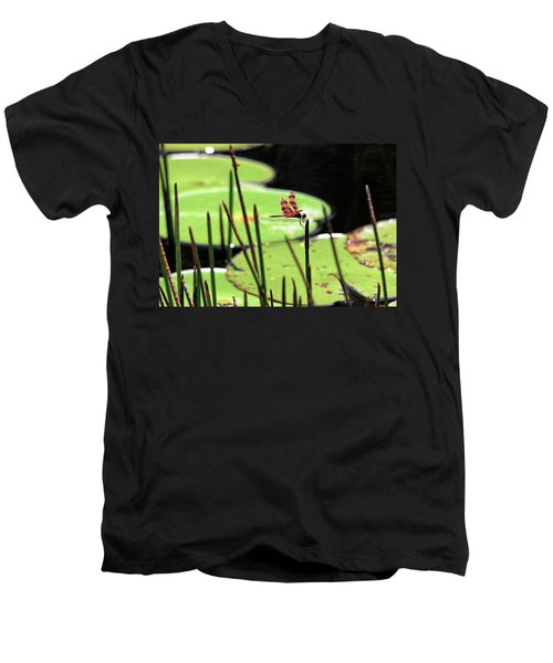 Resting Dragonfly Men's V-Neck T-Shirt