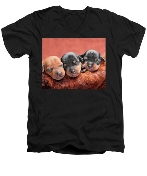Resting In The Lord Men's V-Neck T-Shirt