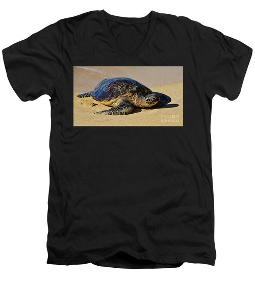 Resting Sea Turtle Men's V-Neck T-Shirt by Craig Wood