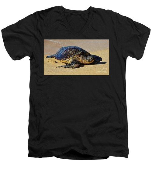 Resting Sea Turtle Men's V-Neck T-Shirt