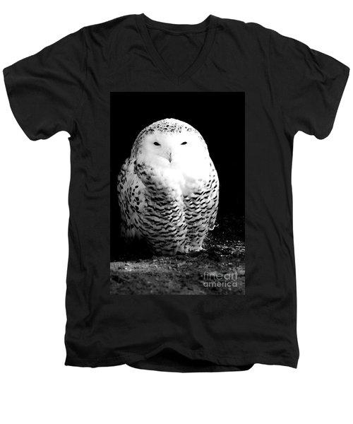 Resting Snowy Owl Men's V-Neck T-Shirt by Darcy Michaelchuk