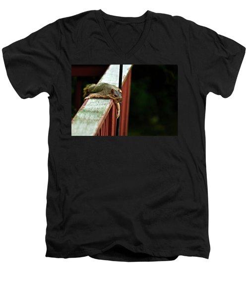 Resting Squirrel Men's V-Neck T-Shirt