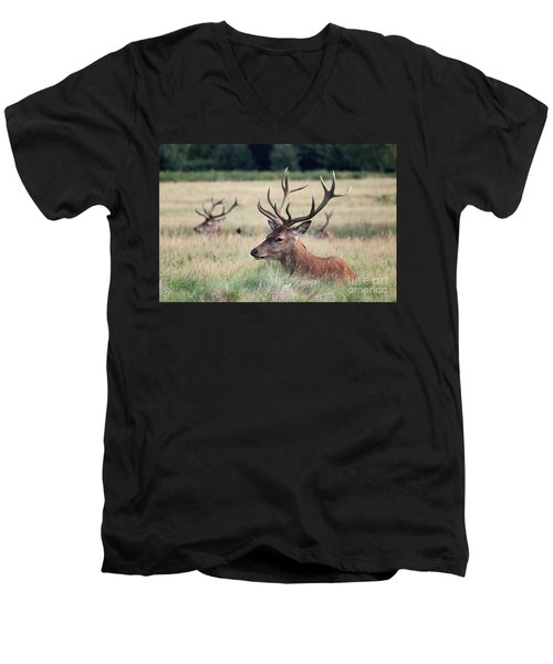 Richmond Park Stags Men's V-Neck T-Shirt