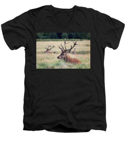 Richmond Park Stags Men's V-Neck T-Shirt