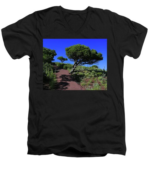 Rim Trail 1 Men's V-Neck T-Shirt