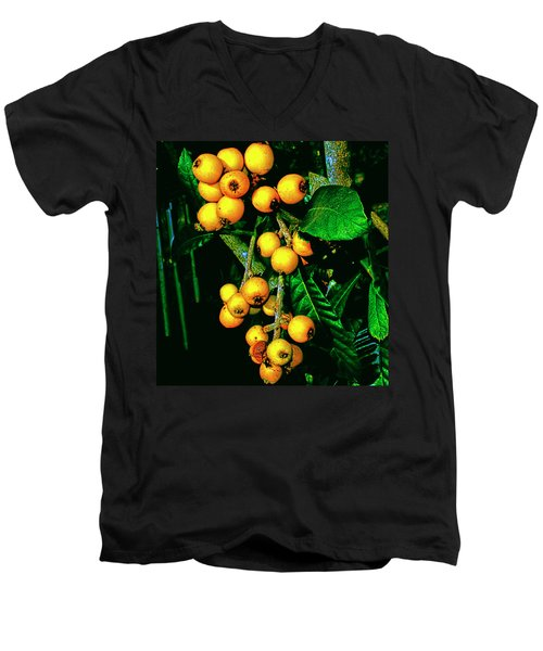 Ripe Loquats Men's V-Neck T-Shirt by Gina O'Brien