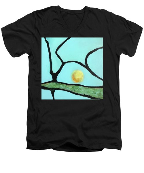 Ripening IIi Men's V-Neck T-Shirt