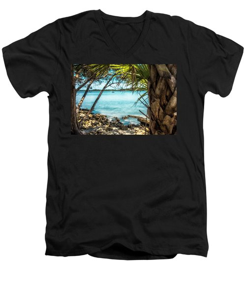 River Wilderness Men's V-Neck T-Shirt