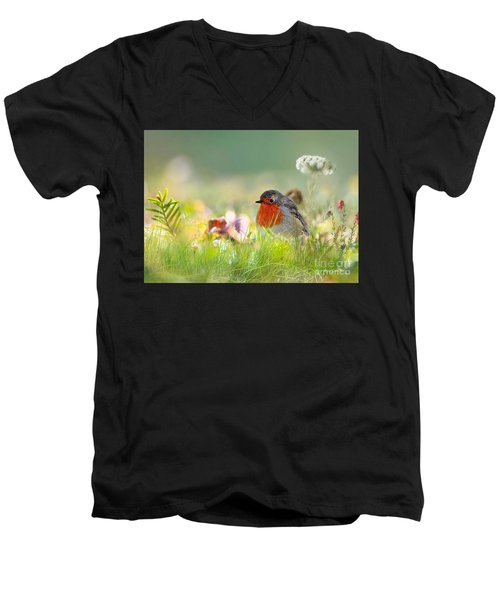 Robin Red Breast Men's V-Neck T-Shirt
