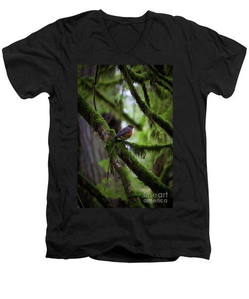 Robin Vignette Men's V-Neck T-Shirt
