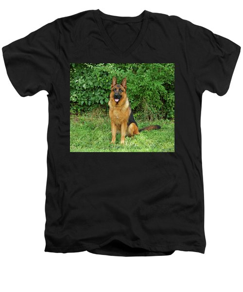 Men's V-Neck T-Shirt featuring the photograph Rocco Sitting by Sandy Keeton