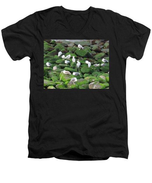 Rocks And Gulls Men's V-Neck T-Shirt