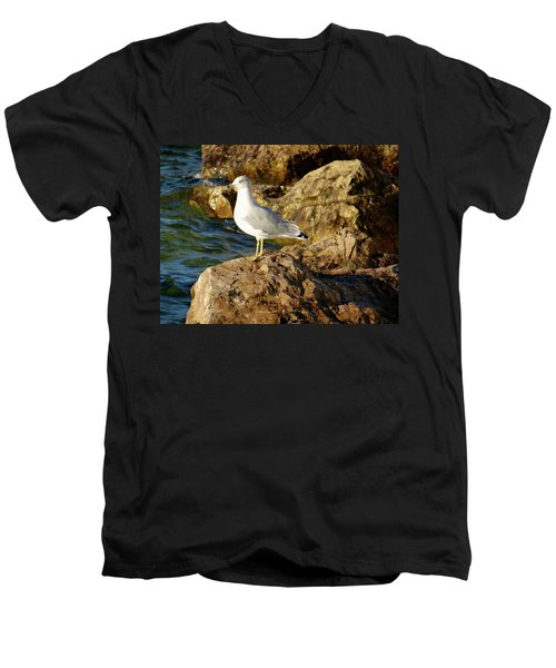 Rocky Waters Men's V-Neck T-Shirt