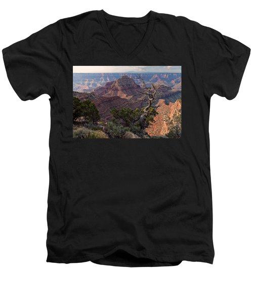 Vishnu Temple Men's V-Neck T-Shirt