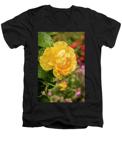 Rose, Julia Child Men's V-Neck T-Shirt