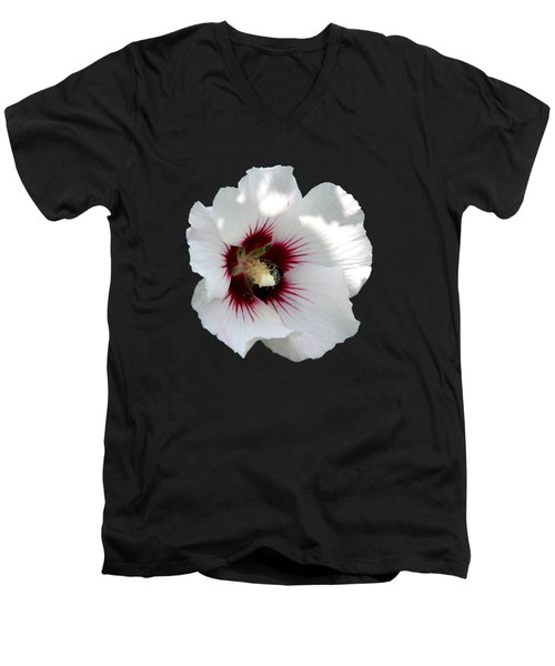 Rose Of Sharon Flower And Bumble Bee Men's V-Neck T-Shirt by Rose Santuci-Sofranko