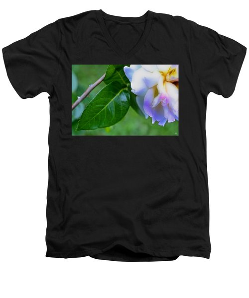 Rose Pedals Men's V-Neck T-Shirt